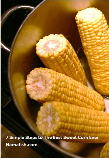 Sweet and Tender Corn, My Favorite ://Namafish.com