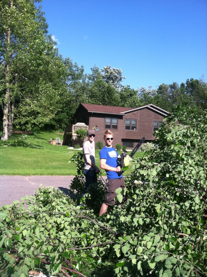 tree-chainsaw-summer-trust-family-fun.jpg  //Namafish.com